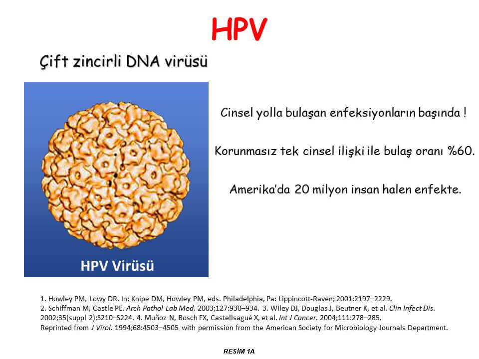 HPV-Virüsü