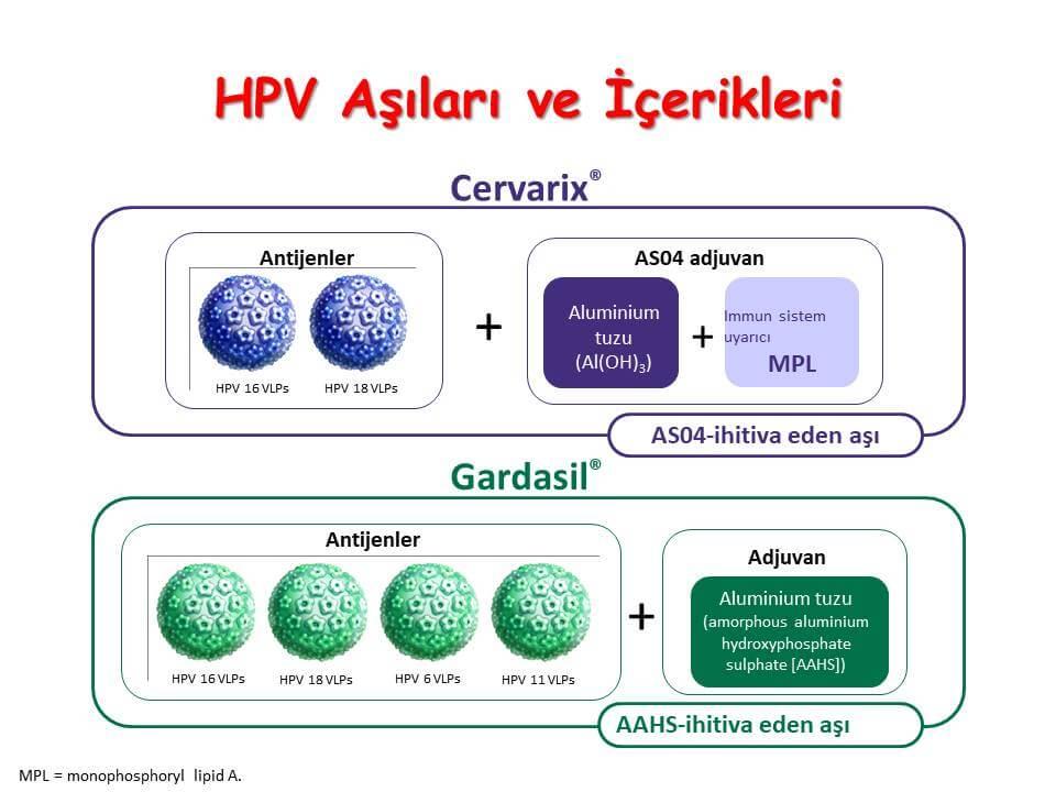 HPV Aşıları ve İçerikleri
